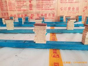 武汉华师南湖附小运动木地板施工案例